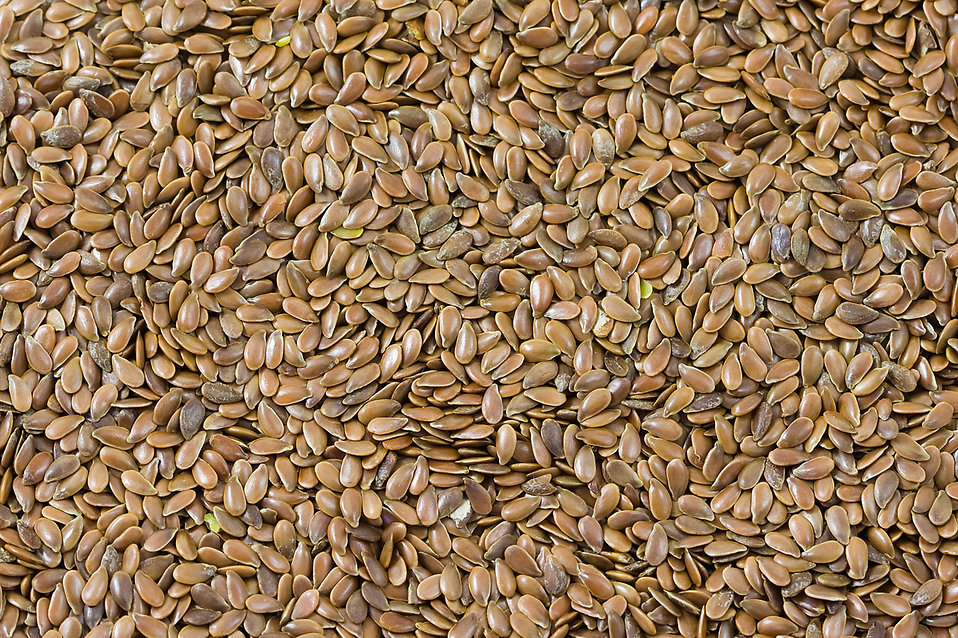 Understanding Seeds for Survival