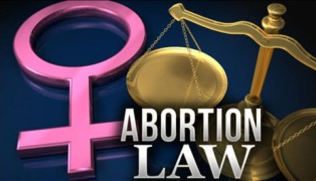 Michigan to Vote on Abortion Ban